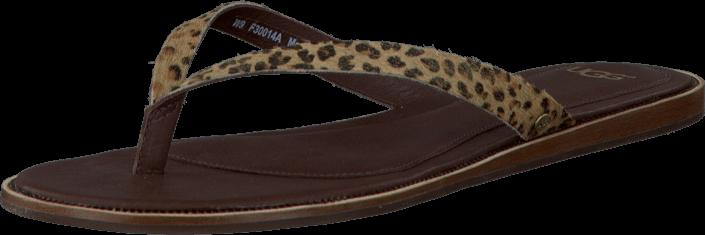 Kjøp UGG W Allaria Metallic Leopard Metallic Brune Sko Online
