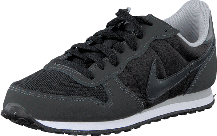 Kjøp Nike Wmns Nike Genicco Black/Anthracite-Wlf Gry-White Grå Sko Online