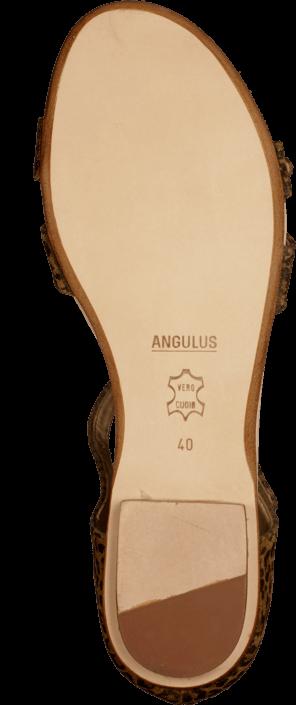 Kjøp Angulus 5421-101 Leopard Brune Sko Online