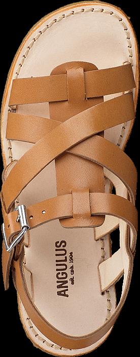 Kjøp Angulus 4391-101-1787 Cognac Brune Sko Online