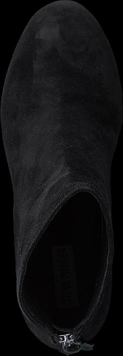 Kjøp Steve Madden Sinthia Ankleboot Black Suede Svarte Sko Online