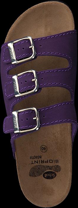 Kjøp Scholl Rio Purple Brune Sko Online