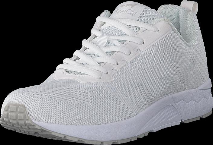 Kjøp Polecat 435-3410 White Hvite Sko Online