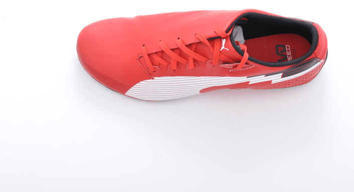 Puma - Evospeed F1 Low SF