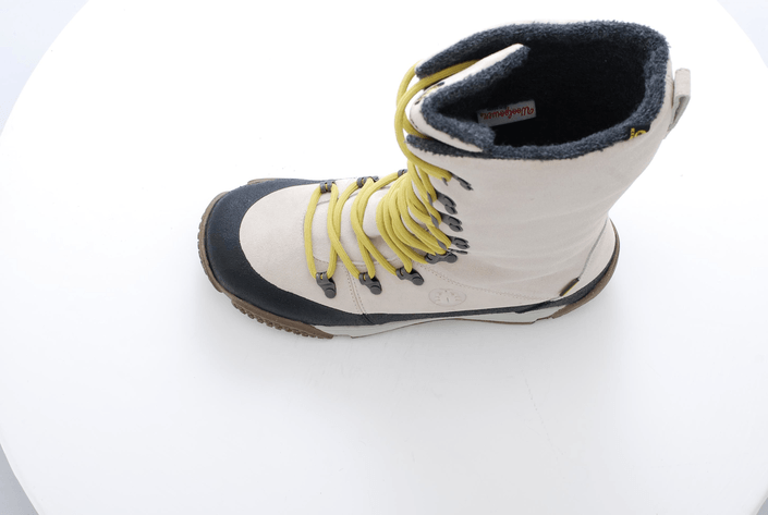 Icebug - EIR Ash Ash