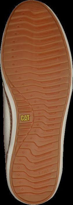 CAT - Luster
