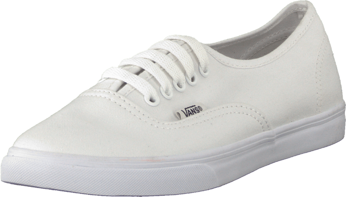 Vans - U Authentic Lo Pro