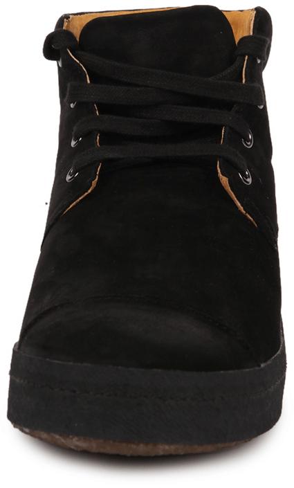 Shoe The Bear - Dandy