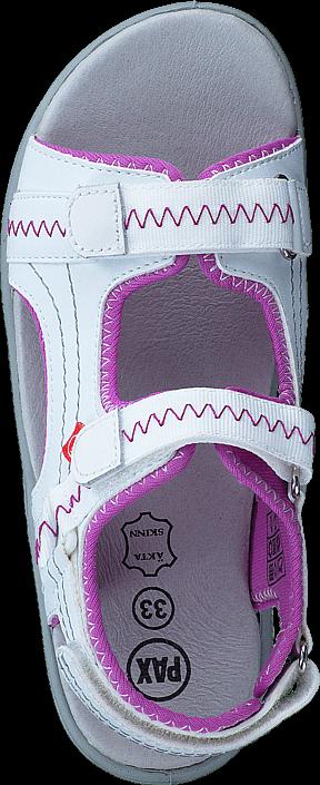 Pax - Gadfly White/Pink