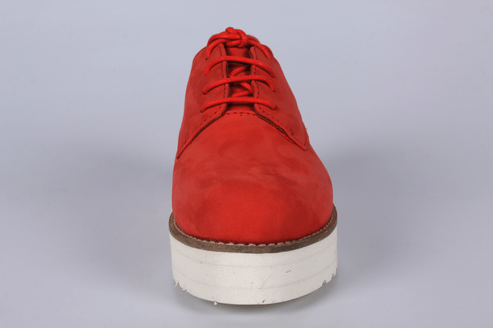 Shoe Biz - 1213329