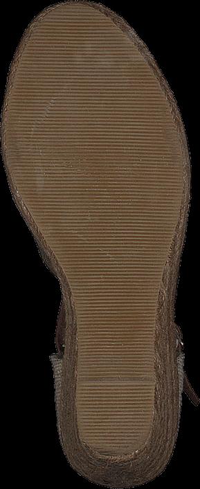 Wildflower Alondra