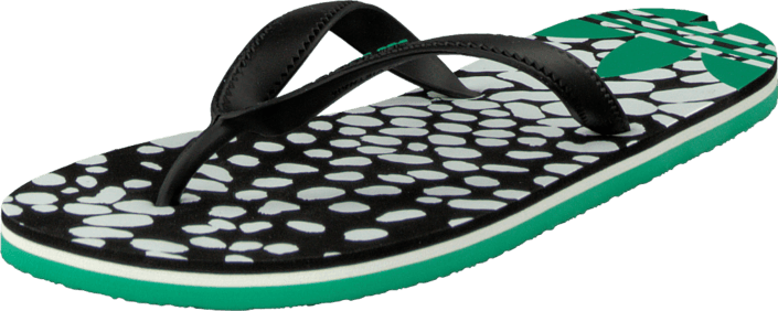 adidas Originals - Adisun W Core Black/Surf Green