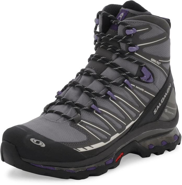 Salomon - Cosmic 4D 2 Gtx W Grey