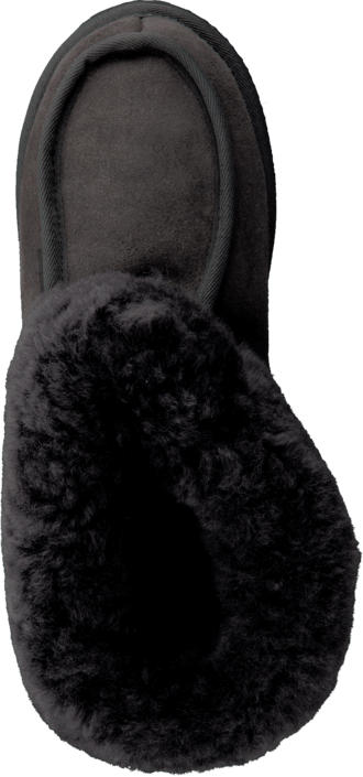 Shepherd - Lena Asphalt