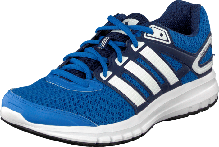 adidas Sport Performance - Duramo 6 M Royal/Ftwr White