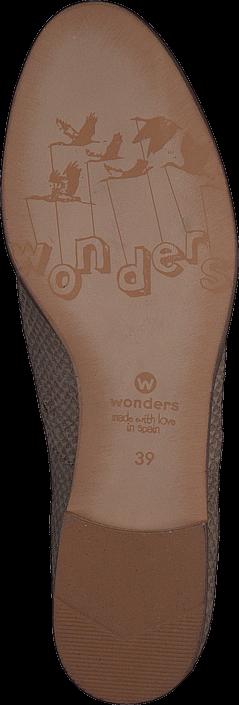 Wonders - A-1703