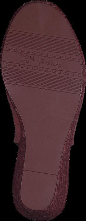 Xti - 25923
