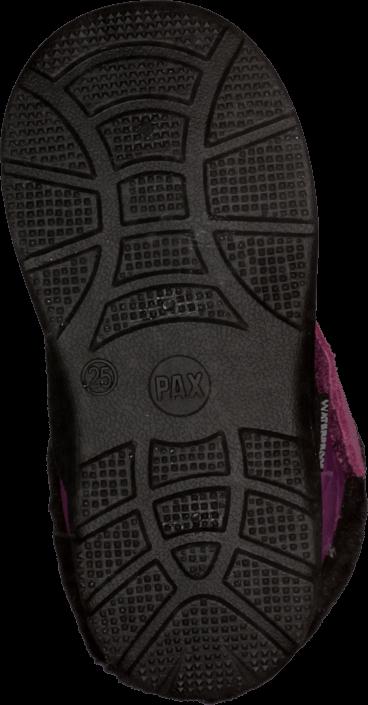 Pax - Flinga Purple