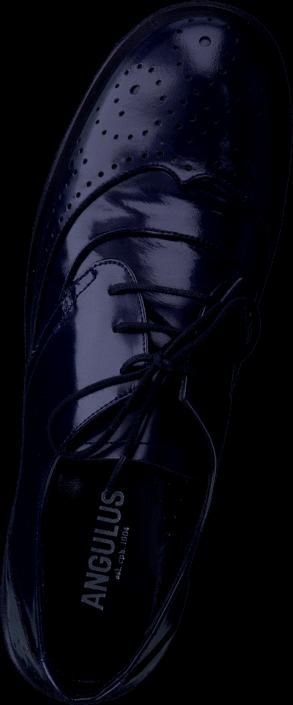 Angulus - 3502-102 Blue