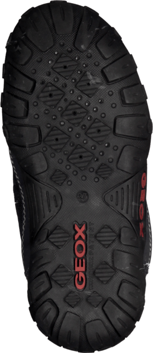 Geox - B Gulp B Boy Abx Dk Navy/Red