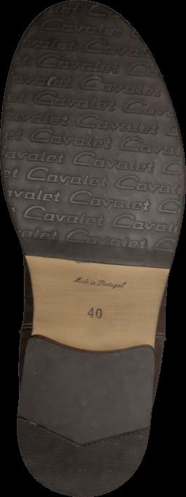 Cavalet - 31046069.005 Brown