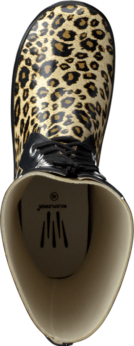 Wildflower - Samara lady Leopard