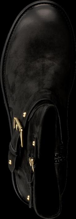 Billi Bi - Black Varese/Gold 402 Black/Gold