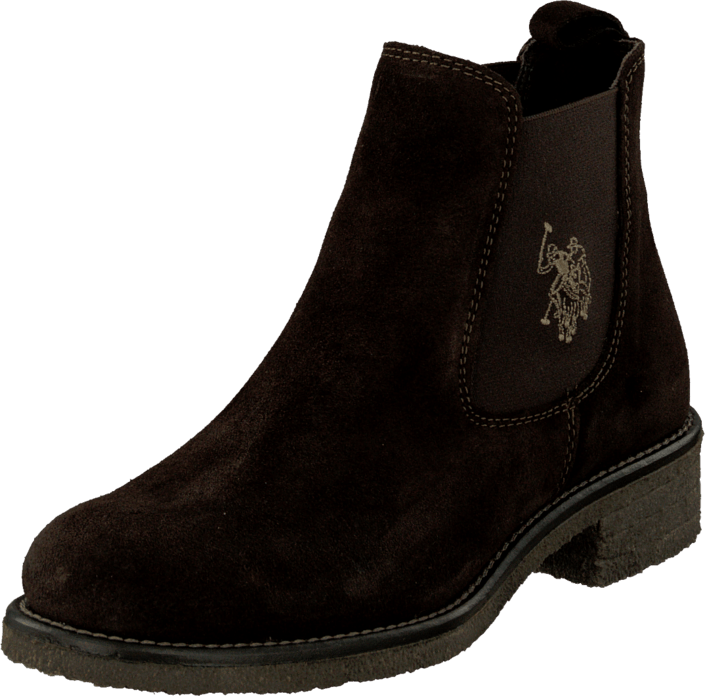 U.S. Polo Assn Faris 1 Suede Dark Brown