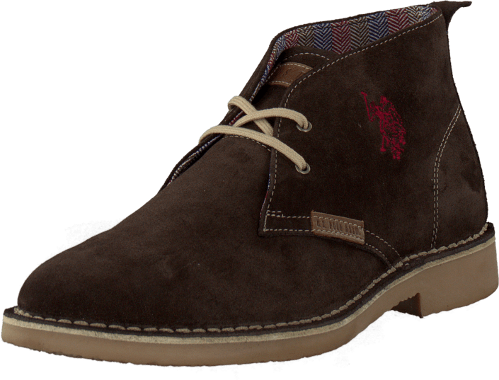 U.S. Polo Assn - Amadeus Suede Dark Brown