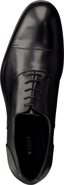 Tiger of Sweden - Aldwin 12 Black