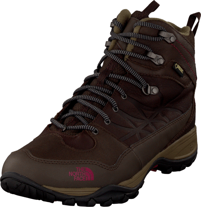 The North Face W Storm Winter Gtx Dem Bro/Gan Bro