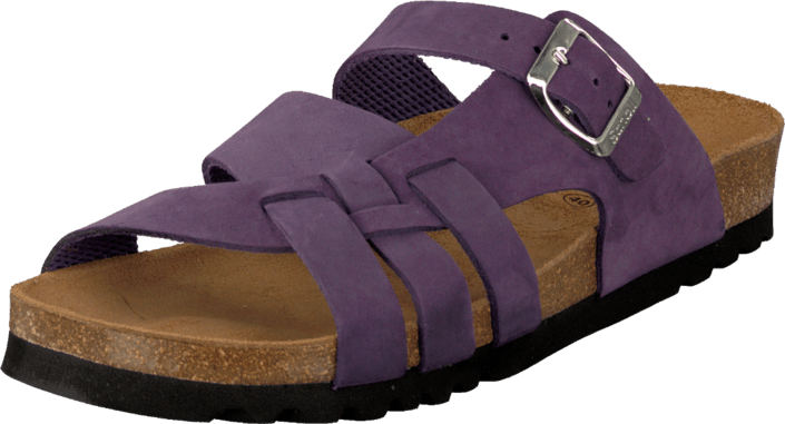 Scholl - Carsol Purple