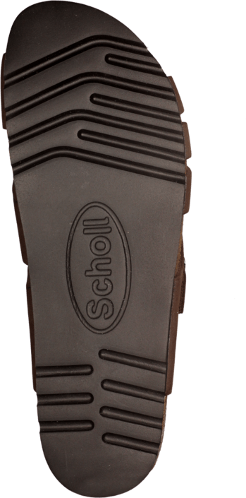 Scholl - Carsol Brown