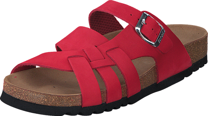 Scholl - Carsol Red
