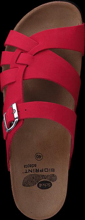 Scholl Carsol Red