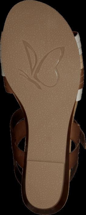 Caprice - Agy Cognac Comb