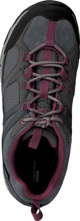 Merrell - Daria Gtx Granite/Rose