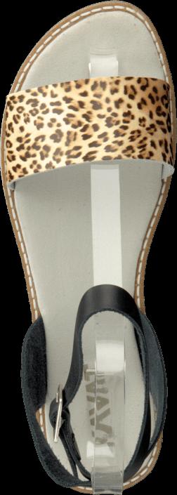 Kavat - Ramnäs Xc Leopard