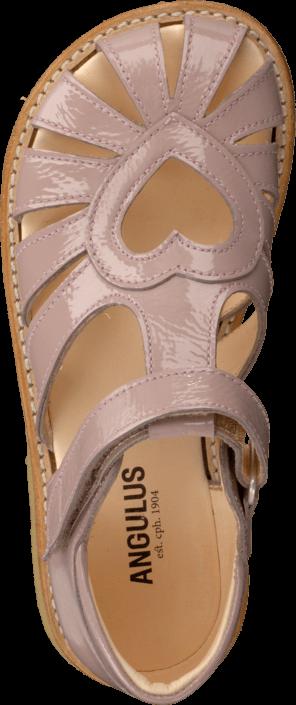 Angulus - 5186-101 Patent powder
