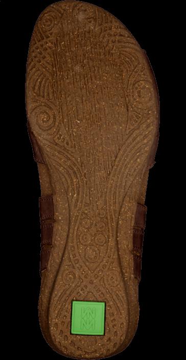 El Naturalista - Wakataua N448 Brown