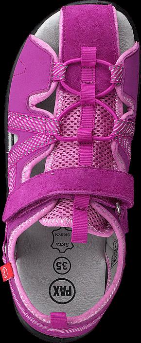 Pax - Hawker Pink