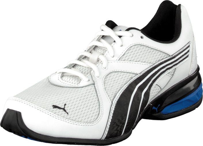 Puma - Tazon 5 Aurgo White