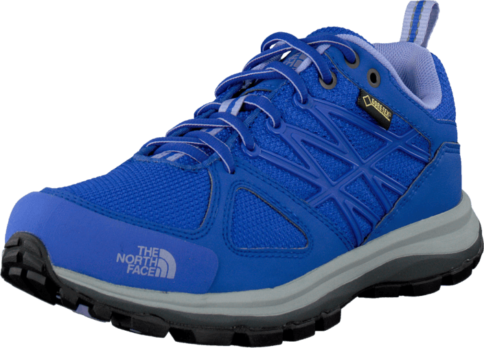 The North Face - W  Litewave Gtx Vibrant Blue/Lavendula Purple
