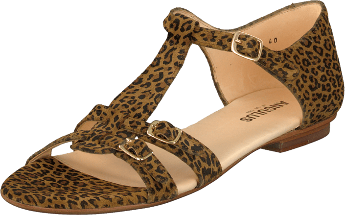 Angulus 5421-101 Leopard