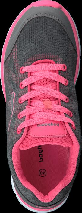 Bagheera - Studio Grey/Pink