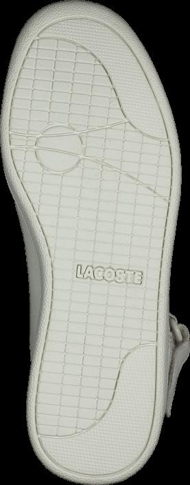 Lacoste - Turbo 2 Wth