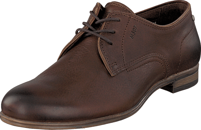 Sneaky Steve - H1501 Markham Low Brown