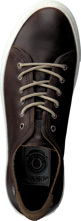 Sneaky Steve - H1503 Buddy Low Dark Brown