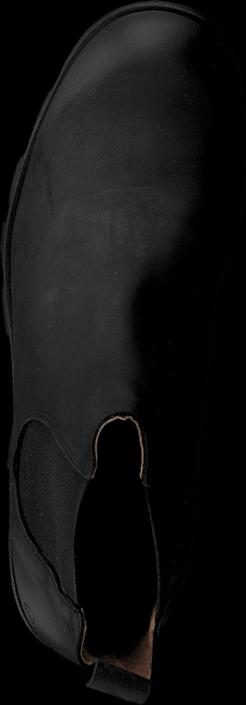 Sixtyseven - Saga 76254 Oleato Black