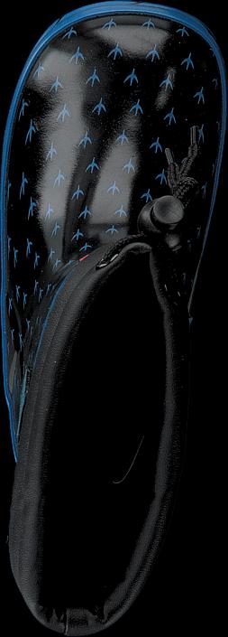 Pax - Hoa Blue